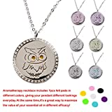 M.JVisun Owl Crystal Perfume Essential Oil Diffuser Stainless Steel Locket Necklace + Link Chain + 7 Pads