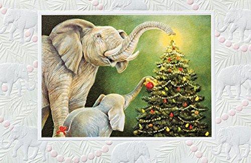 Elephants Fine Art - Pack of 16