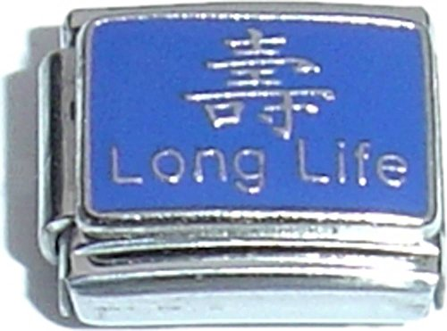 Long Life And Chinese Character Italian Charm (Italian Charm Chinese Character)