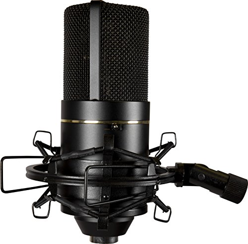 MXL 770 Cardioid Condenser Microphone - Import It All