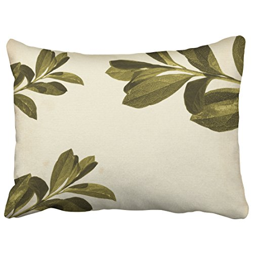 Capsceoll leaf olive leaf Decorative Throw Pillow Case 20X26Inch,Home Decoration Pillowcase Zippered Pillow Covers Cushion Cover with Words for Book Lover Worm Sofa Couch