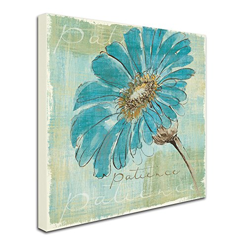 Spa Daisies II by Chris Paschke Wall Decor, 35 by 35-Inch Canvas Wall Art