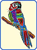 Colorful Southwest Designed Parrot - Etched Vinyl Stained Glass Film, Static Cling Window Decal