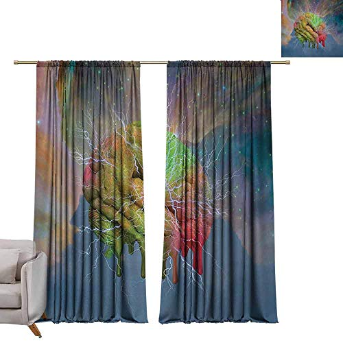 berrly Blackout Curtains Psychedelic,Brain Storm Fantasy Visual Modern Mental Ethereal Energy Artful Fiction,Blue Pistachio W96 x L96 Grommet Window Drapes