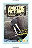 Amazing Pictures and Facts About Walruses: The Most Amazing Fact Book for Kids About Walruses