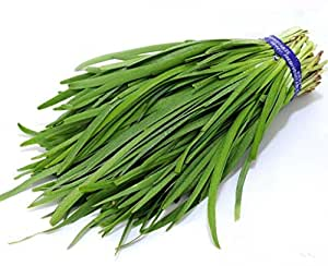 Futaba® Garlic Chives Chinese Chives Pure Natural Green Organic Vegetable 260 Seeds