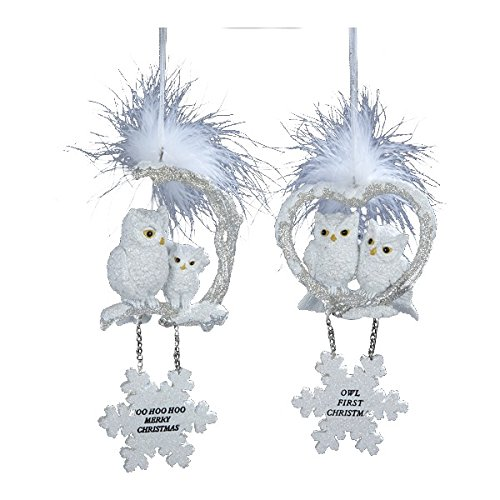 White Owls With Snowflake Dangle And Saying Ornament Set Of 2