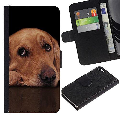 EuroCase - Apple Iphone 5 / 5S - labrador retriever golden guilty dog eyes - Cuero PU Delgado caso cubierta Shell Armor Funda Case Cover