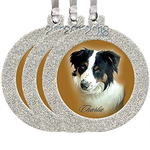 - 2018 Magnetic Glitter Christmas Photo Frame Ornaments with Non Glare Photo Protector, Round 3-Pack - Silver