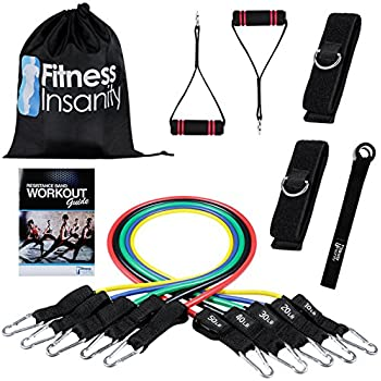 Fitness Insanity Resistance Band Set - Include 5 Stackable Exercise Bands with Waterproof Carrying Case, Door Anchor Attachment, Legs Ankle Straps and Exercise Guide eBooks - 100% Life Time Guarantee