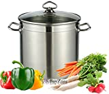 Large Deep Stainless Steel Cooking Stock Pot Casserole Glass Lid Induction Base (15 Litre)