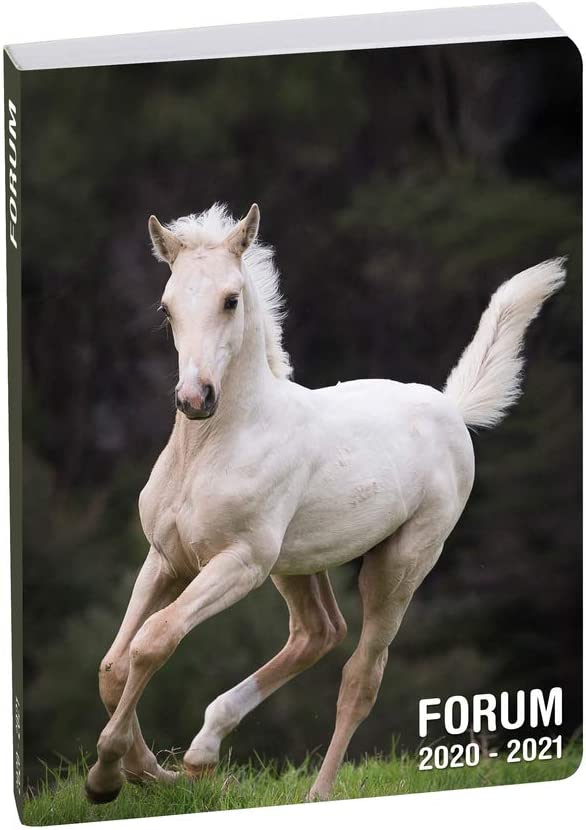 Exacompta 1877817E Aout 2020 julio 2021 - Agenda (12 x 17 cm), diseño de caballos