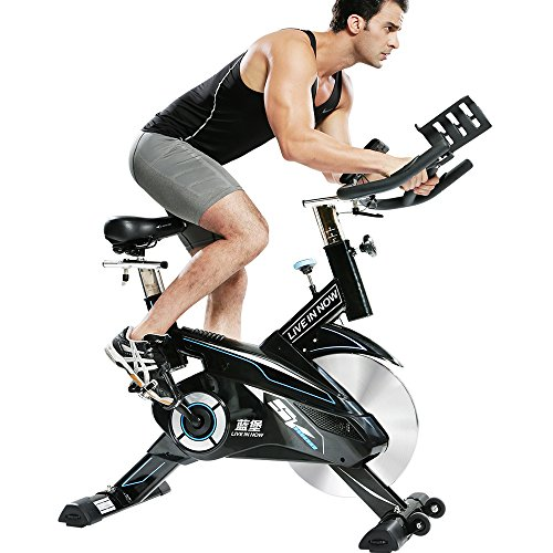 L Now LD 582 Indoor Cycling Bike
