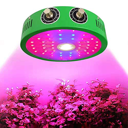 1000W COB LED Grow Light for Indoor Plant Adjustable Full Spectrum Plant Light Growing Lamps with Veg and Bloom for Basement Planting