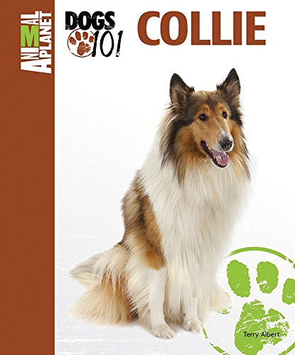 Collie (Animal PlanetTM: Dogs 101)