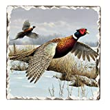 Counter Art Tumbled Tile Coasters, Game Birds – Pheasants, Set of 4 For Sale