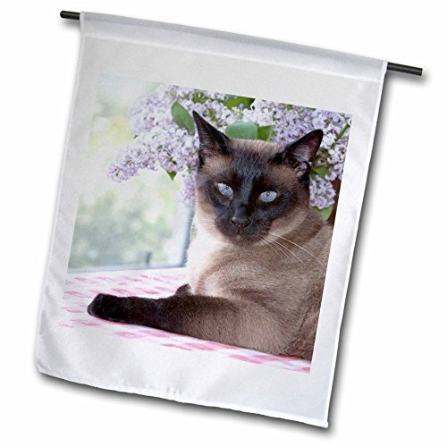 Beautiful Cats Siamese Cat On Tablecloth Garden Flag Double Sides Polyester Decorative Flag for Home Yard Decorations 12 x 18 (Monogram Tablecloth)