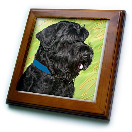 3dRose ft_4411_1 Black Russian Terrier Framed Tile, 8 by 8-Inch -
