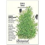 Tetra Dill Herb Seeds - 3 grams - NEW!