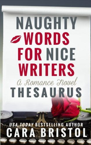 Naughty Words Nice Writers Thesaurus product image