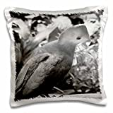 Susans Zoo Crew Animals - short beaked bird head turned black and white - 16x16 inch Pillow Case