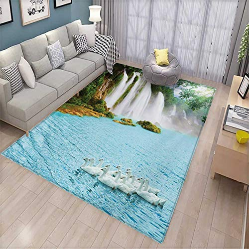 Waterfall Room Home Bedroom Carpet Floor Mat Image of a Grand Waterfall with Swans in The Lake Sunny Day Nature Print Floor Mat Pattern 5'8