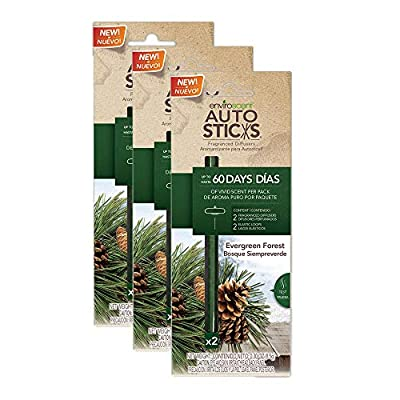 Enviroscents Auto Sticks Natural Car Air Fresheners, 3-Pack with 6 Sticks (Evergreen Forest): Automotive
