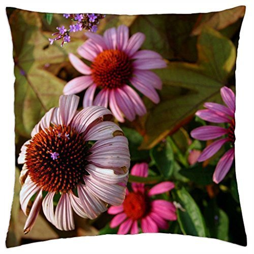 Blair Louisa BLACK EYES SUSANS COUSIN - Throw Pillow Cover (Susan Throw)