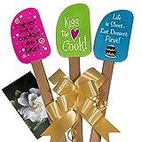 3 Piece Fun Silicone Spatula Gift Set with decorative bow...