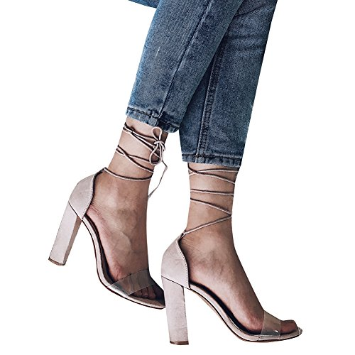 Women's Sexy Transparent Lace Up Open Toe High Chunky Heeled Sandals Strappy Dress Pumps (US 12, Nude)