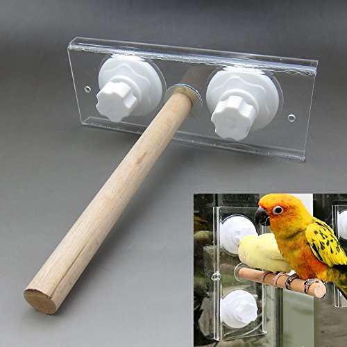 Alfie Pet - Aja Wooden Stand for Birds - Size: Small