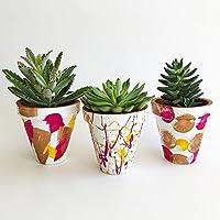 Set de 3 macetas de barro decorativas Rosa-Amarillo