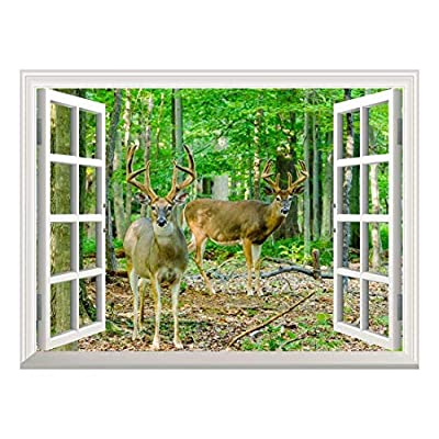 Pretty Craft, Removable Wall Sticker Wall Mural Whitetail Deer Buck in Velvet Standing in The Woods Creative Window View Wall Decor, Created By a Professional Artist