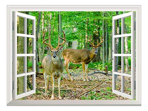 "wall26 Removable Wall Sticker/Wall Mural - Whitetail Deer/Buck in Velvet Standing in The Woods | Creative Window View Home Decor/Wall Decor - 24""x32"""