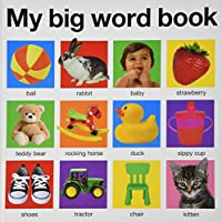 My Big Word Book (casebound) (My Big Board Books)