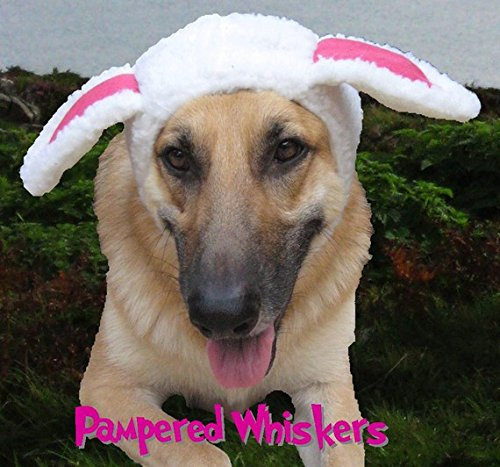 Pampered Whiskers The Sheepish One Sheep Costume hat Large Dogs (15-19