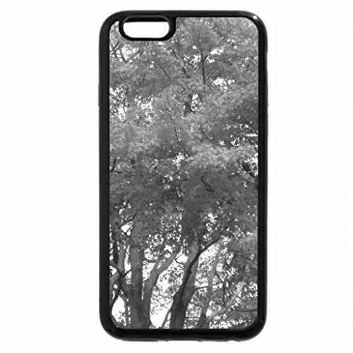 iPhone 6S Plus Case, iPhone 6 Plus Case (Black & White) - Autumn Glory