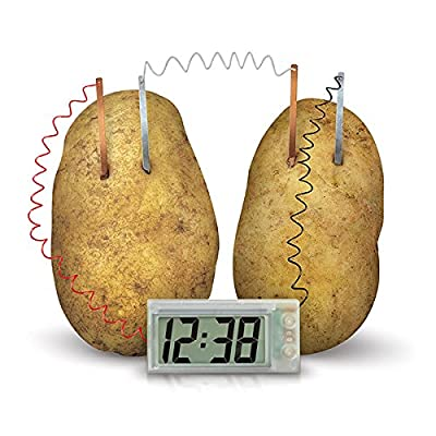 4M Green Science Potato Clock: Toys & Games