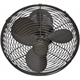 Matthews Fan Co KC-TB Kaye 17 in. Oscillating Wall Fan in Textured Bronze