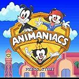 ASMGroup Animaniacs English Version 16 Bit Big Gray Super Game Card For NTSC Game Player