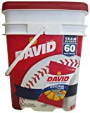 David Sunflower Seeds Roasted & Salted Original ALL Natural, Team Bucket 60 Pack of 1.75 Oz Bags by DAVID Seeds