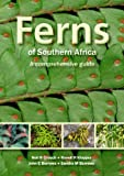Ferns of Southern Africa, Neil R. Crouch and John E. Burrows, 1770079106