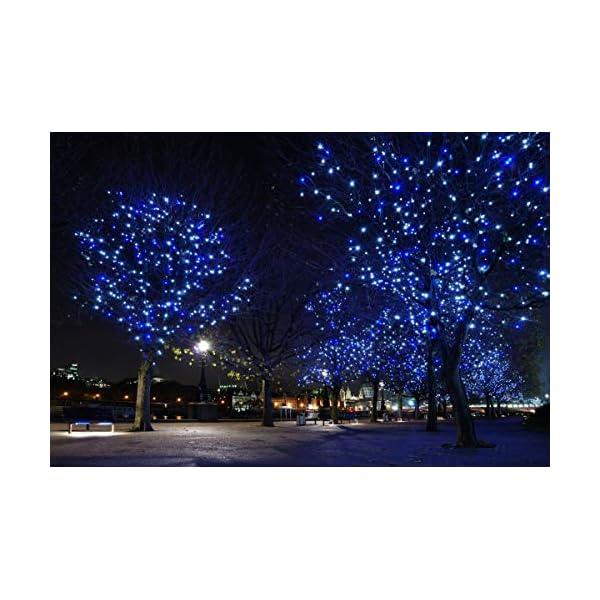 Elegear 40M 300LEDs Luci Natale Esterno IP44 Impermeabile Luci Natale Batteria con 8 Modalità Illuminazione, Decorazione per Natale, Giardino, Patio, Albero di Natale - Blu Bianco 4 spesavip
