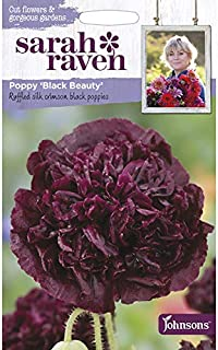 Portal Cool Seed Sarah Raven fiori recisi Poppy Black Beauty