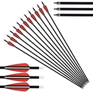 12 Pack Archery Carbon Arrows 28 30 32 inch Spine 500 Hunting Arrows,with Replaceable Broadhead Nock Rotatable