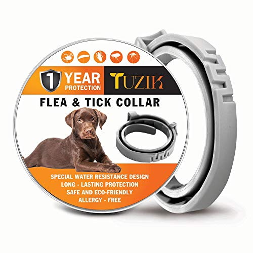 TUZIK Flea Collar for Dogs - 12 Months Flea and Tick Prevention - Dog Flea and Tick Treatment - Stable, Durable and Waterproof Flea and Tick ()