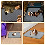 BWOGUE Guinea Pig Fleece Cage Liners, 2 Pack