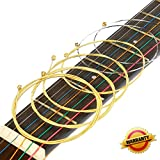 #2: Acoustic Guitar Strings Set 2 Pack Light (012-053) Ideal for beginners and performers