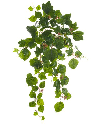 24'' French Ivy Hanging Bush x9 w/Berries & 127 Leaves Green (pack of 6) by Arcadia Silk Plantation