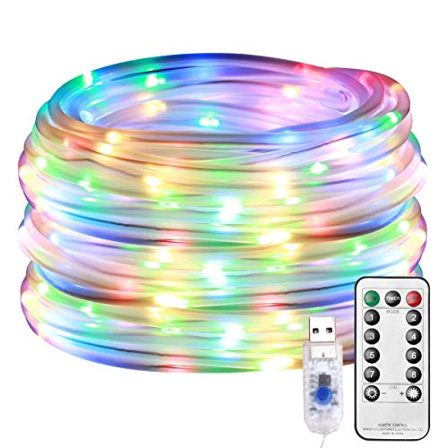 LE LED Rope Light with Remote, Multi Colored, USB Powered, Dimmable, Waterproof, 33ft 100 LED Indoor Outdoor Light Rope and String for Deck, Patio, Bedroom, Boat, Camping, Landscape Lighting and More ()